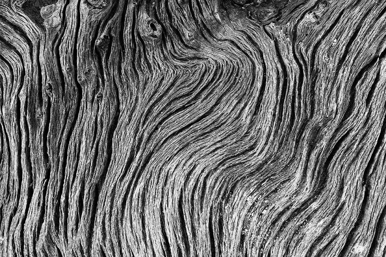 Wavy Driftwood Woodgrain Patterns Detailed Black And White