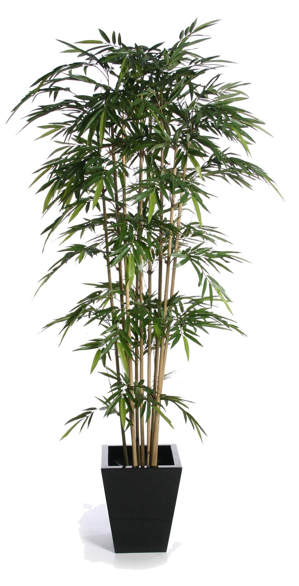 The Best Artificial Plants For Your Home Fake House Plants Living Room Plants House Plants Decor