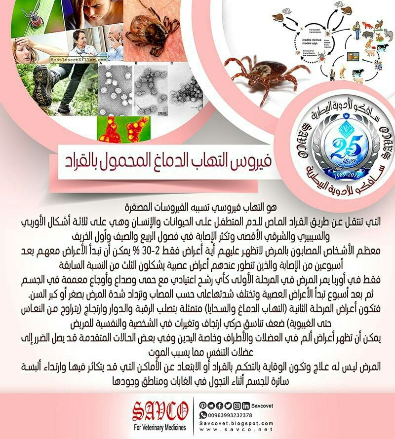 Pin By Savco For Veterinary Medicines On أمراض مشتركة 10 Things Ill