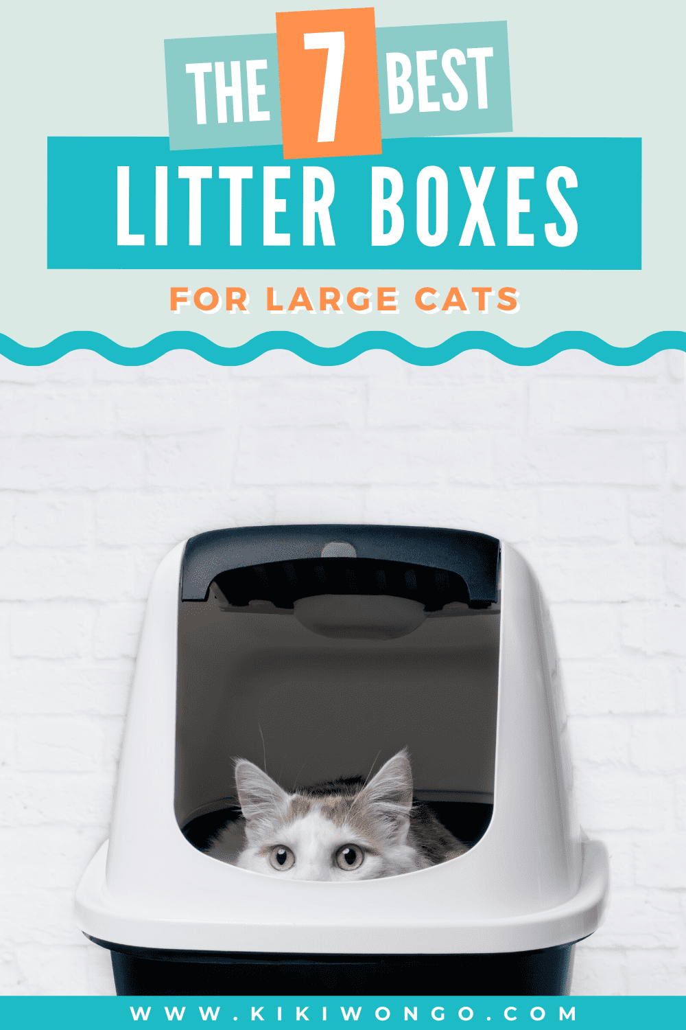 The 7 Best Litter Box For Large Cats In 2020 Best Litter Box Litter Box Cat Care