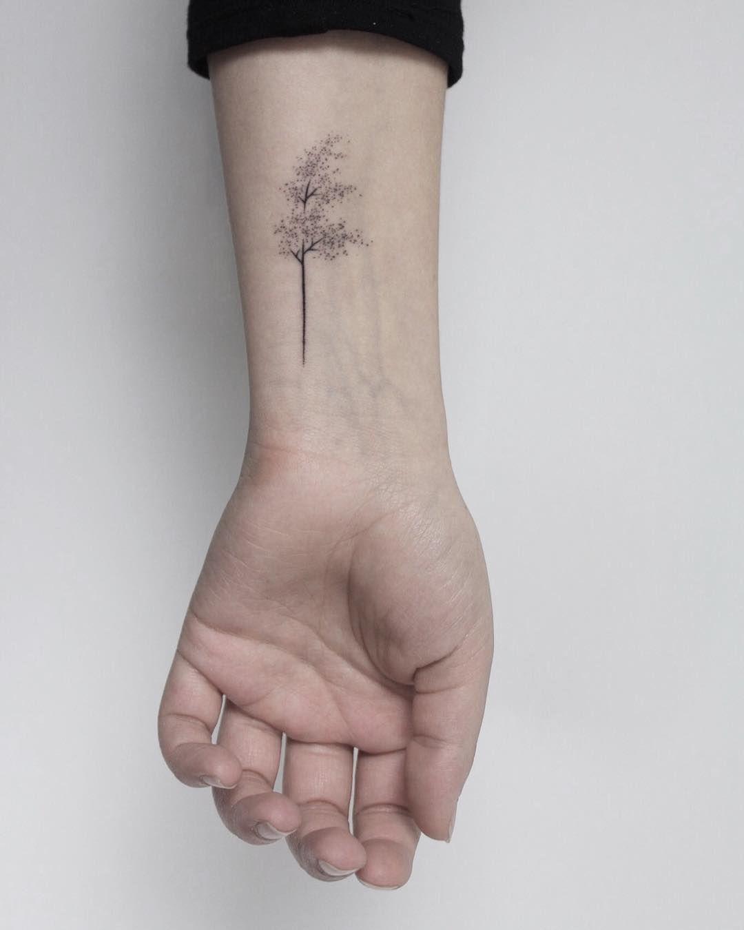 Pin by chelsea mcadam on tattoo ideas tiny tree tattoo
