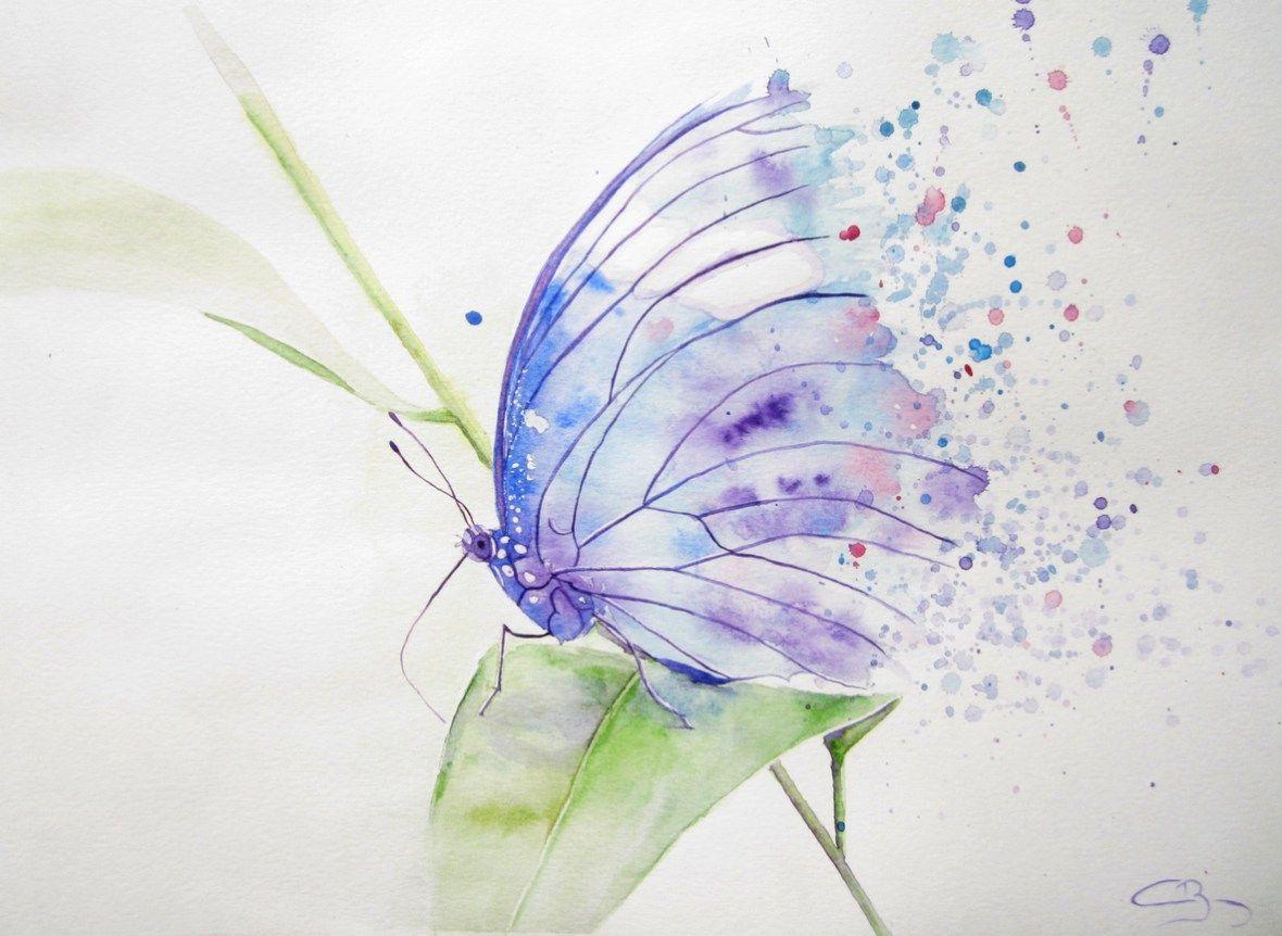 Aquarelle de papillon aquarelle papillon pinterest for Pinterest aquarell