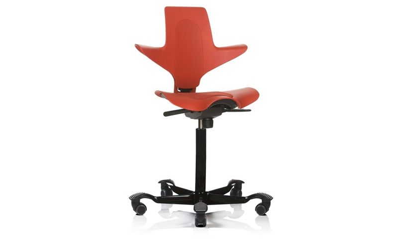 Amazing Hag Capisco Puls Ergonomic Chair Review Home Office Onthecornerstone Fun Painted Chair Ideas Images Onthecornerstoneorg