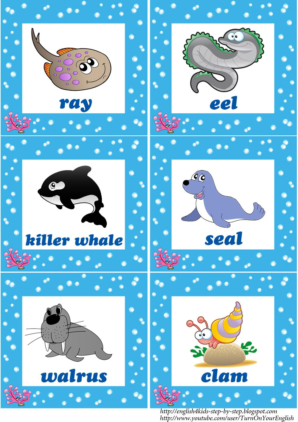 Deep In The Ocean Deep In The Sea Song For Kids Kids Songs Animals For Kids Animal Flashcards [ 1415 x 1000 Pixel ]