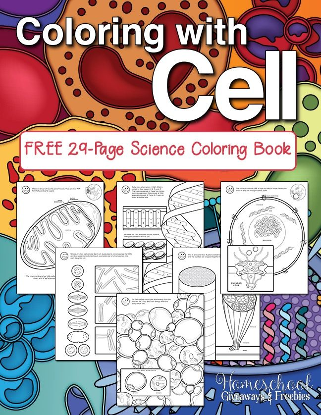 Free Science Coloring Book Coloring With Cell Eclectic
