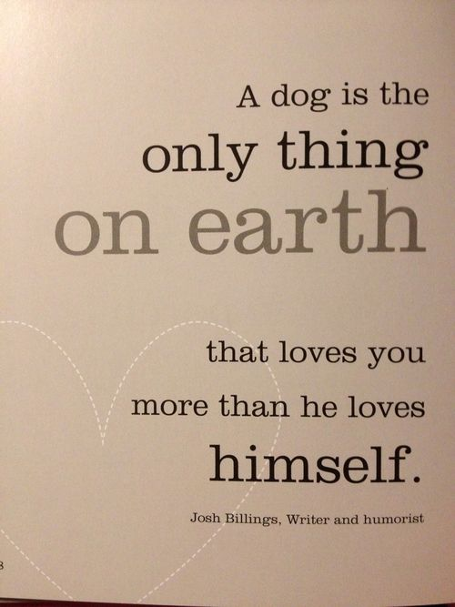A dog is the only thing on earth that loves you more than he