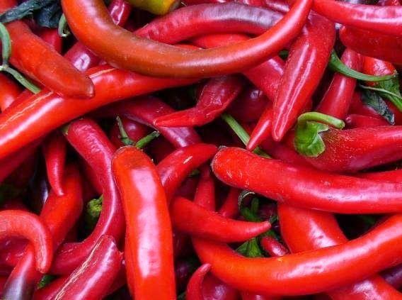 فوائد الشطة الحمراء واضرارها 4 فوائد مدهشة للشطة والفلفل الاحمر الحار Stuffed Peppers Pepper Benefits Stuffed Hot Peppers
