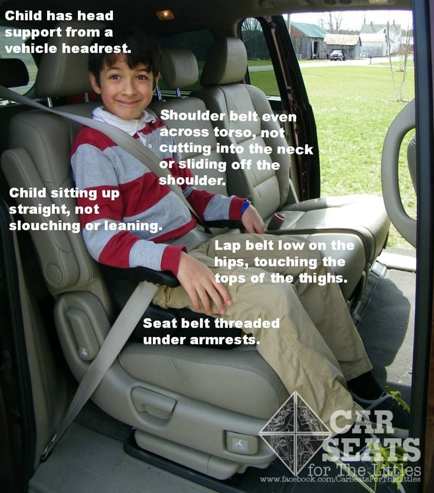 Excellent Heres How A Child Should Look In A Backless Booster Seat Creativecarmelina Interior Chair Design Creativecarmelinacom