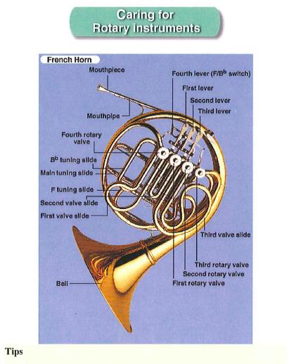 More Binder Stuff Horn Freebies Horns School Band Middle School Band