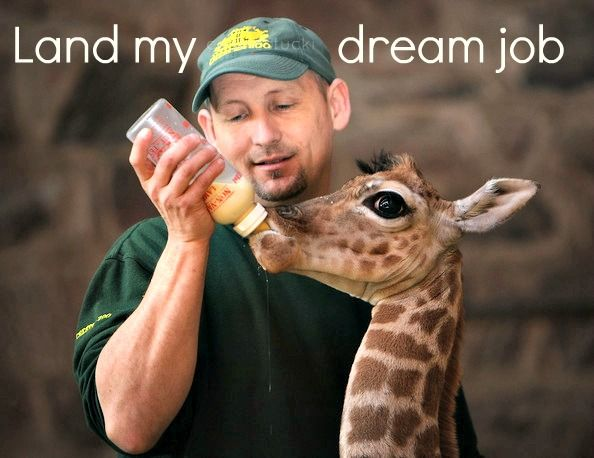 Be A Zookeeper Check I Worked At A Wonderful Zoo The Summer Of