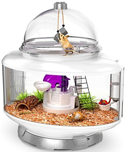 Pin By Jackie Richard On First Apartment Small Animal Cage Animal