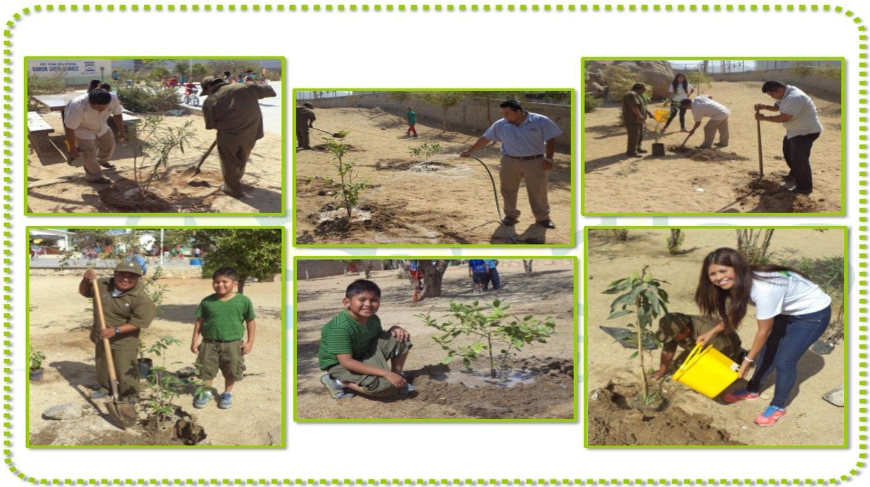 Last April Sandos Finisterra participated in the Reforestation of a Garden Fruit in a local school. #MakeTheDifference #ChangeTheWorld  www.sandos.com  El pasado mes de Abril Sandos Finisterra participó en la Reforestación de un Jardín Frutal en una escuela de la localidad. #HaciendoLaDiferencia #CambiaElMundo