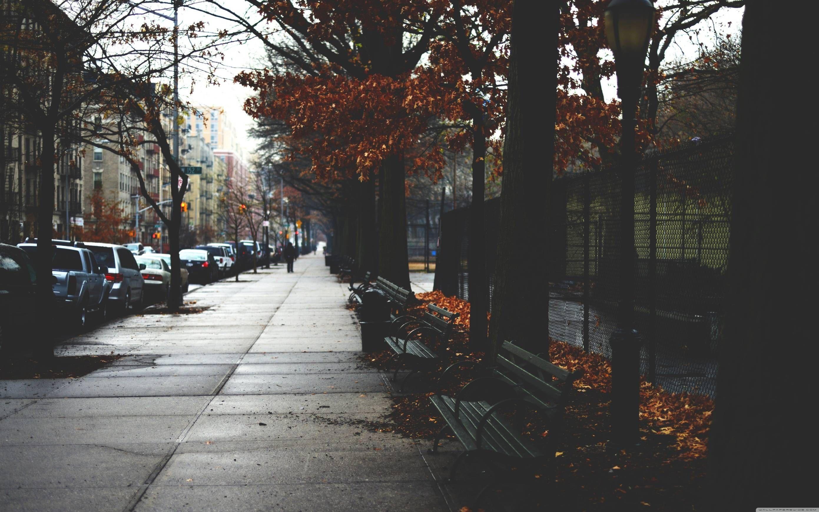 Autumn Wallpapers [1920 x 1080] | Autumn Photo | Обои для ...