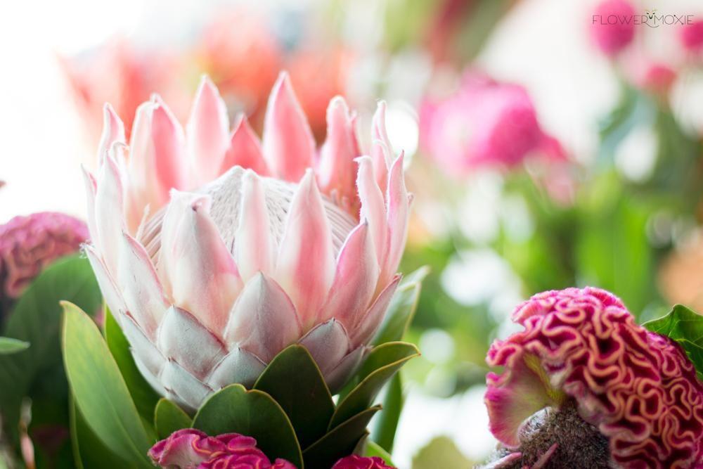 KING PROTEA ARTIFICIAL FLOWER FAKE PLANT DIY WEDDING BOUQUET PARTY DECOR ORNATE