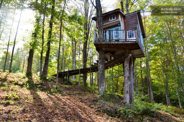 The Fern Forest Treehouse Is A Quaint Getaway In Green Mountain National Forest Modern Tree House Tree House Designs Cool Tree Houses