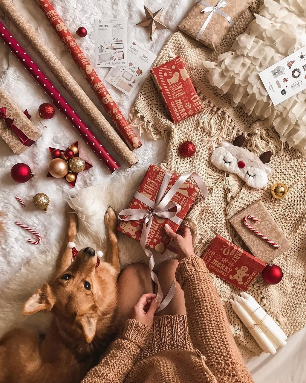 Christian Little Christmas 2020 h o l l a in 2020 | Christmas love, Christian christmas, Merry