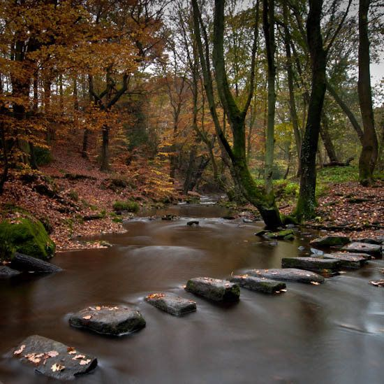 rivelin valley - Google Search