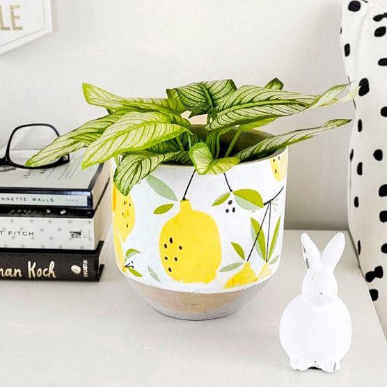 Fabriqué en ciment et peint avec des citrons et des feuilles, ce cache-pot de taille moyenne fera un excellent ajout décoratif à n'importe quelle maison ou bureau., Diamètre : 5,5 poTaille de l'ouverture : 4,75 poConvient à une plante en pot de 4 po