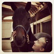 His name was Ceders, he was my cousin's horse and passed on a few weeks ago, may his soul rest in peace <3