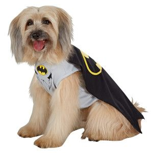 This Dc Comics Batman Costume Will Bring Out The Hero In Your Pet