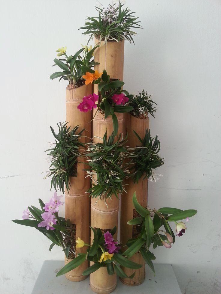 Best Diy Bamboo Design Ideas Bamboo Planter Bamboo 640 x 480