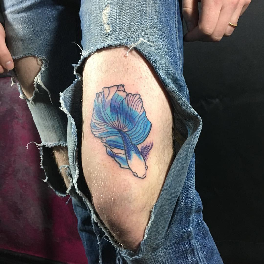 Betta Fish Tattoo Fishy Tattoos Blue Bettas Siamese Fighting Colorful Swimmer Betta Fish Tattoo Betta Tattoo Fighting Tattoo
