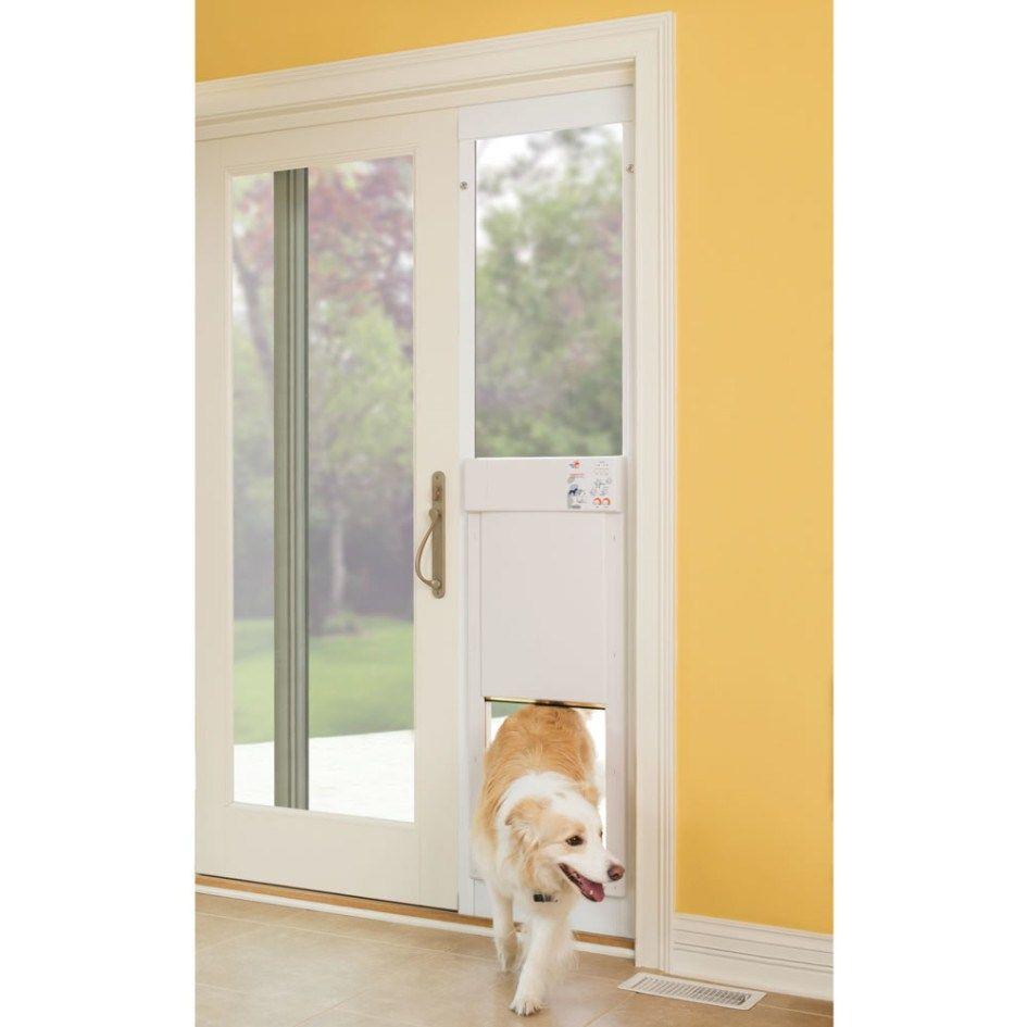 Patio Ideas Patio Door Design With Slidign Dog Door Ideas And With