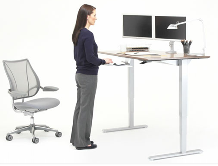 Ergoprise Ergonomic Store Humanscale Float Height Adjustable