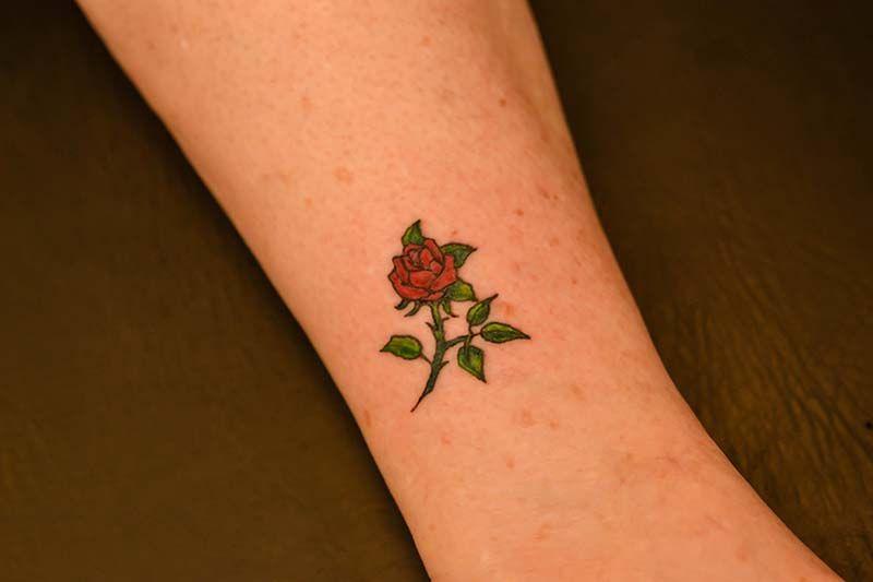Small Rose Tattoo. Illustrator Tattoo.