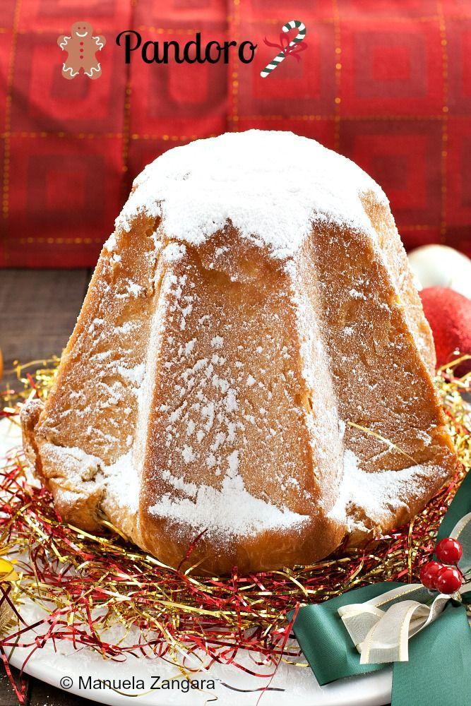 Italian Christmas Cake.Pandoro