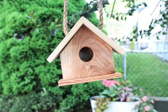 How to Build a Birdhouse Bird house kits Bird houses