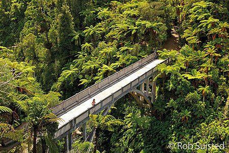 The Bridge to Nowhere in the Whanganui Valley