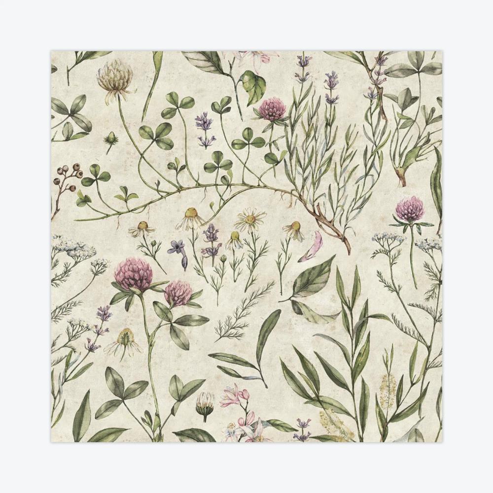 Vintage Botanic Illustration Wallpaper In 2020 Wallpaper Wallpapers Vintage Illustration