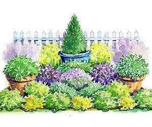sun-loving southern garden plan