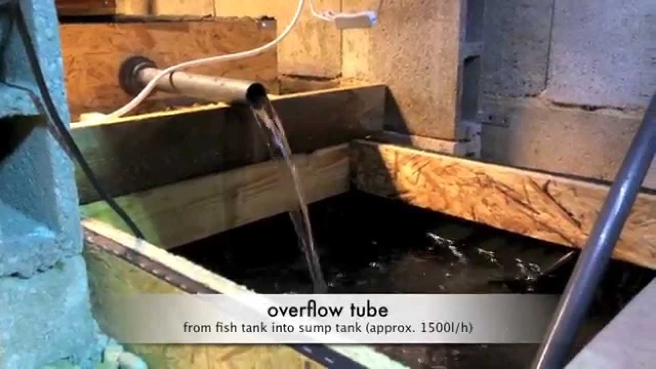 trout aquaponics aquaponics diagram aquaponics canada