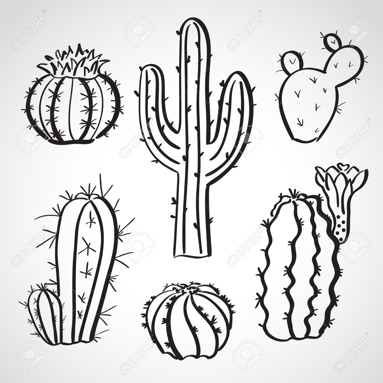 Resultado De Imagen Para Cactus Dibujo