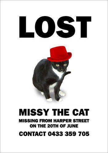 Missing Missy7 Lost Cat Poster Lost Cat Cat Posters