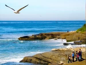 Day Stop La Jolla Beaches What Better Way To Take Advantage Of The Natural Beauty Than With Some Good Old Fashioned Beach Time
