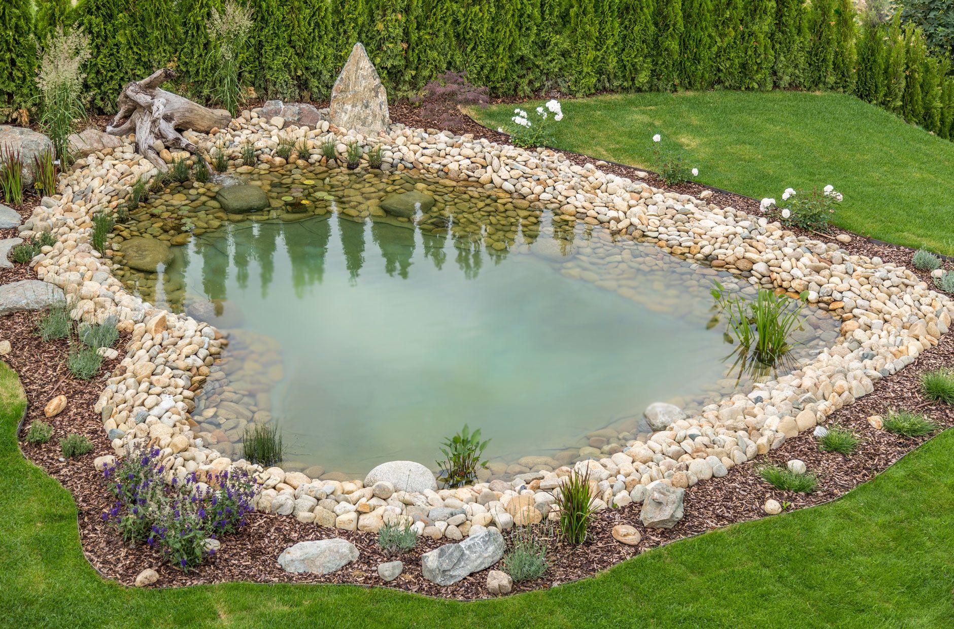Herziges biotop im garten ext rieur pinterest pond for Gartenteich umrandung