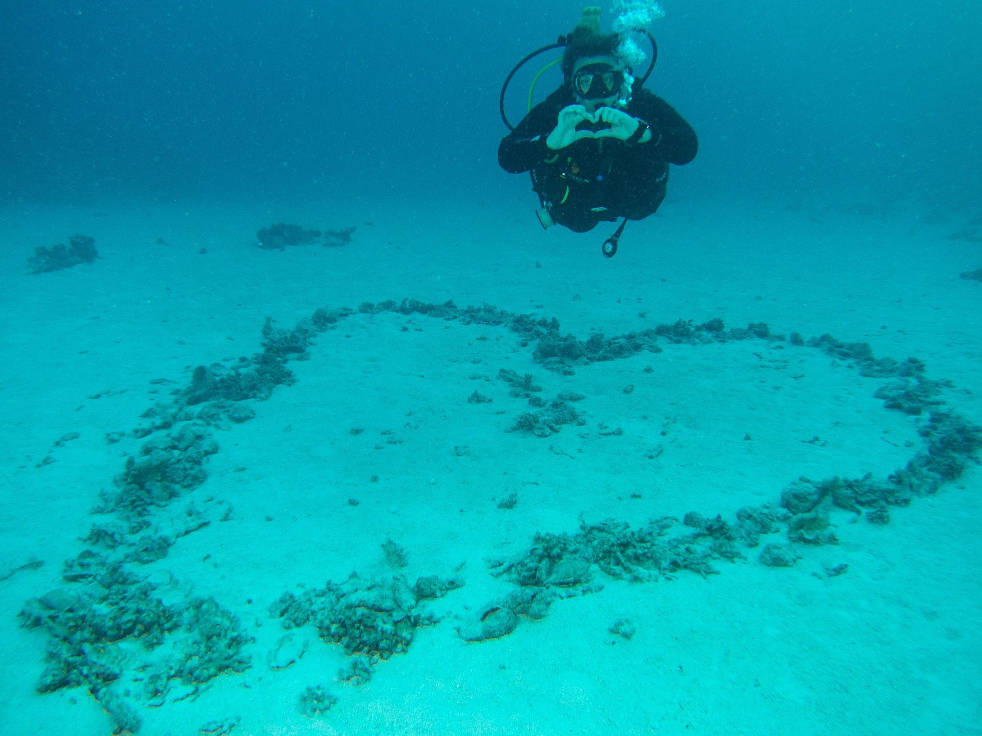 Heart Shaped Reefs Valentines Day Heart Underwater Scuba Diver Egypt