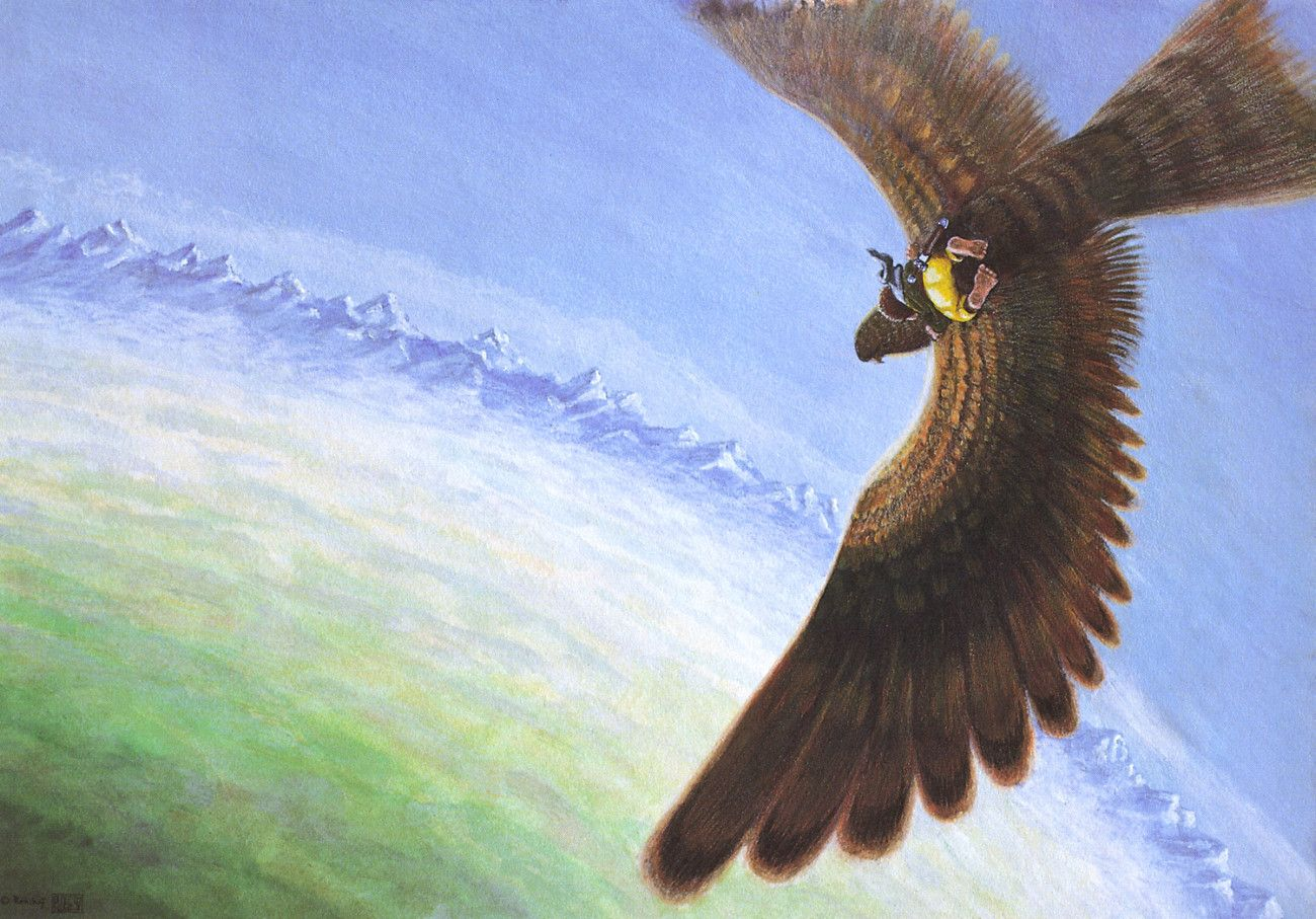 Gerd Renshoff And Ron Ploeg Bilbo Flies On Eagle S Wings