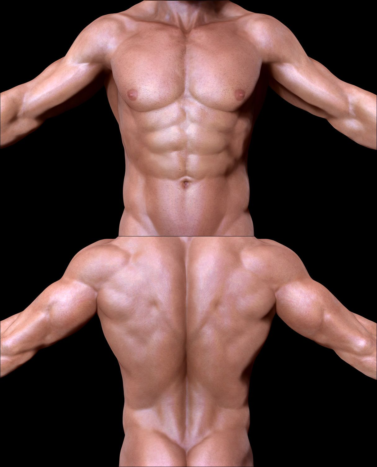 Matcap repository - Page 36 | Body | Pinterest | Anatomía, Textura y 3d