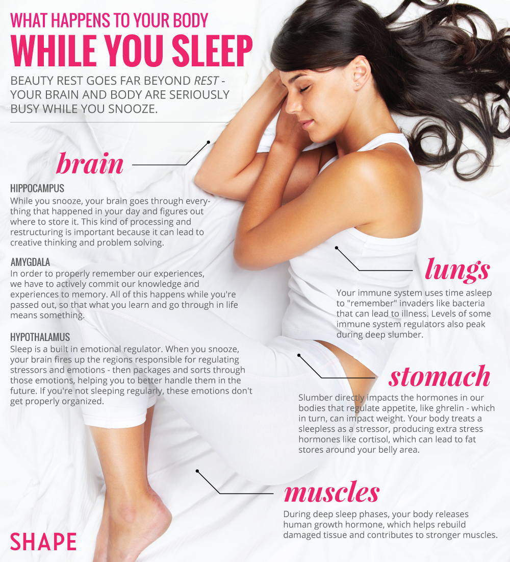 6 Things You Didn T Know Your Body Does While You Sleep Body