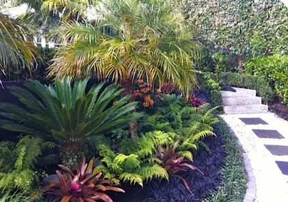 Image result for nz tropical gardens Landscape Like a Rock Star