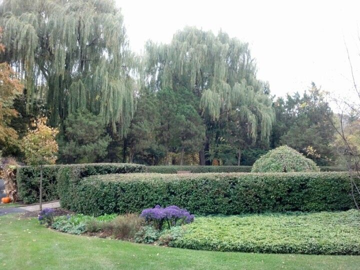 Cantigny park park garden plants