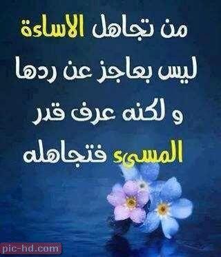 صور حلوه مكتوب عليها كلام عبارات جميلة علي صور حلوة جدا Abuse Quotes Arabic Funny Quotes