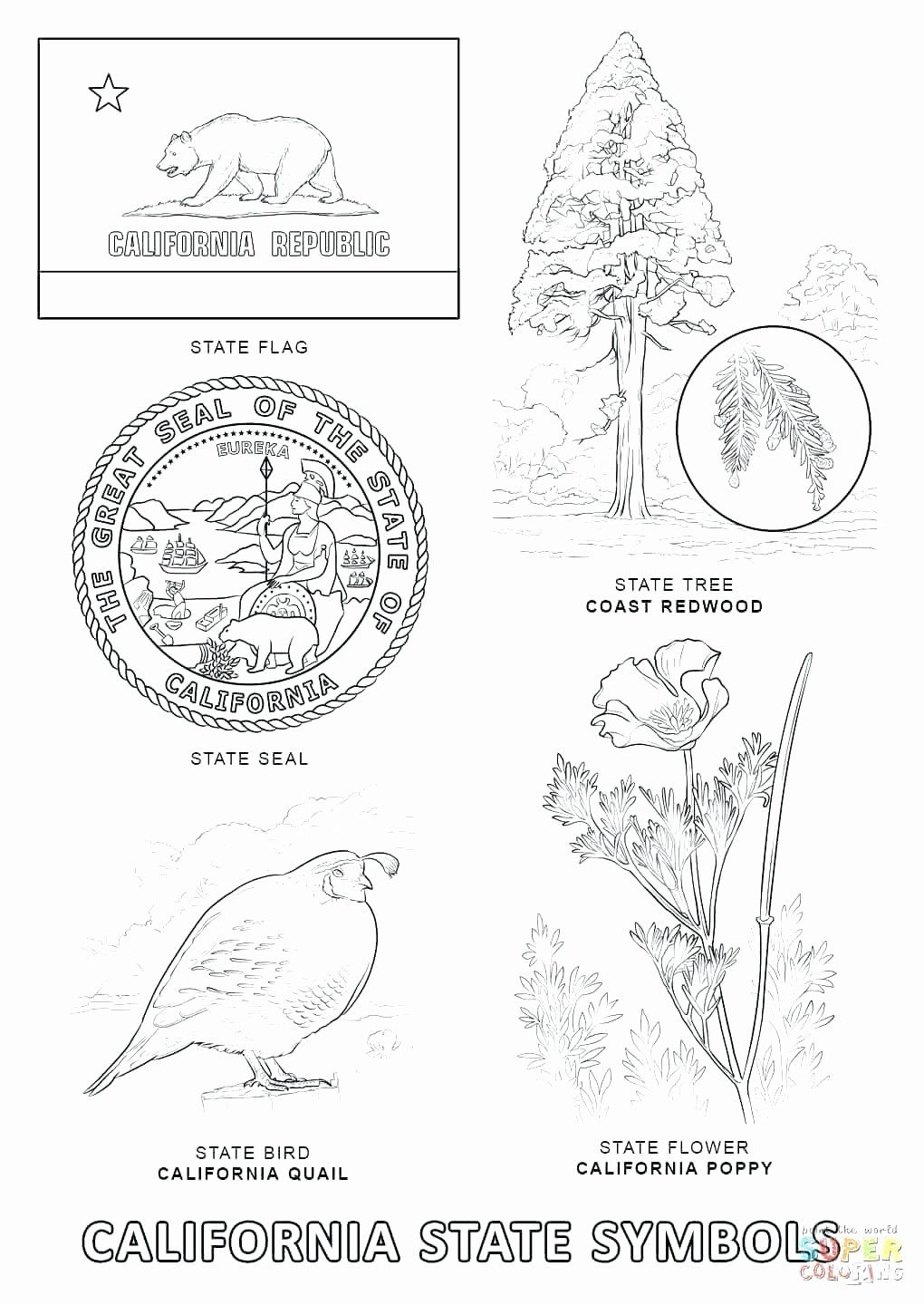 Massachusetts State Flag Coloring Page Unique Lovely New Jersey