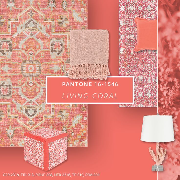 Coral Island Accent Wall: Coral Home Decor, Coral Living Rooms, Coral