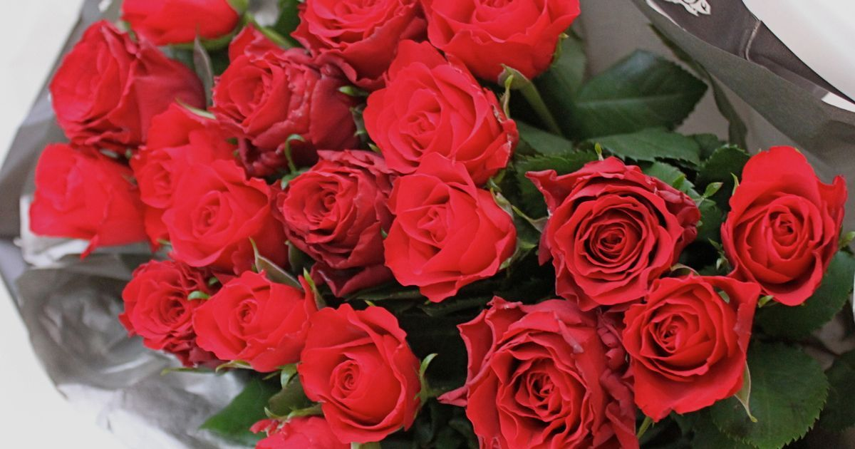 revealed: best valentine's day deals for roses | dozen red roses, Ideas