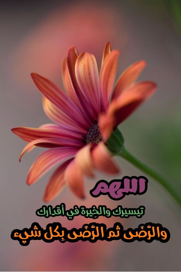 Pin By Umaamed On Duea دعاء Good Morning Gif Morning Wish Romantic Love Quotes